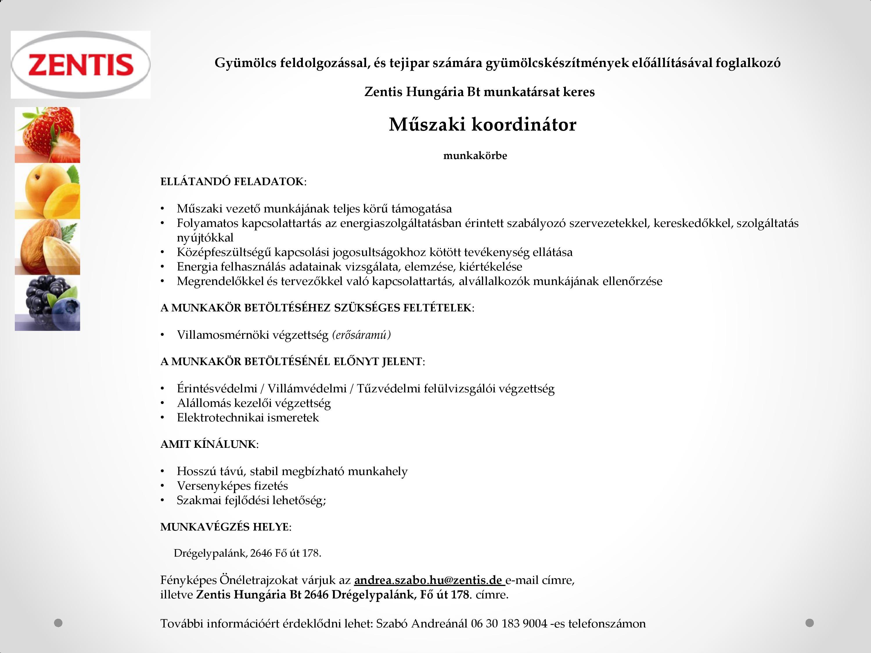 Műszaki koordinátor szines-page-001