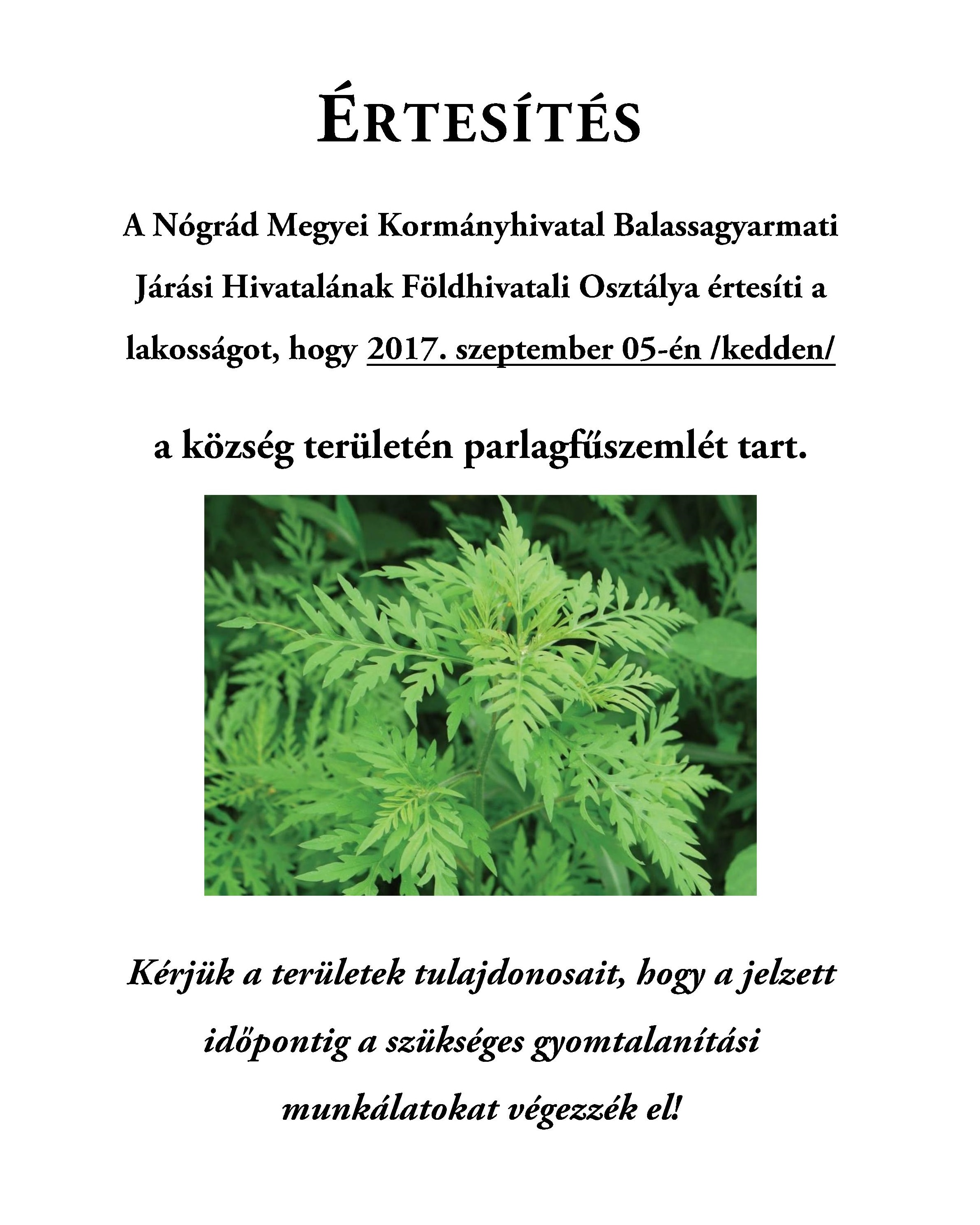 parlagfű plakát-page-001