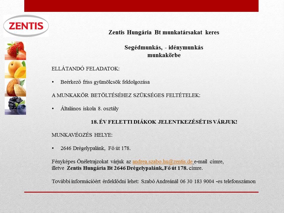 zentis_segedmunkas